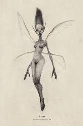 Fairy (1) by AudreyBenjaminsen