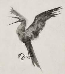 Hunger Bird by AudreyBenjaminsen