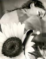 Fleur by alizarine