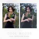 Cool Moods Free Lightroom Preset