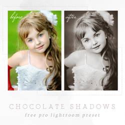 Lightroom Presets by presetsgalore on DeviantArt
