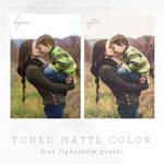 Toned Matte Color Free Lightroom Preset