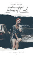 Free Mobile DNG Lightroom Preset - Introvert Cool