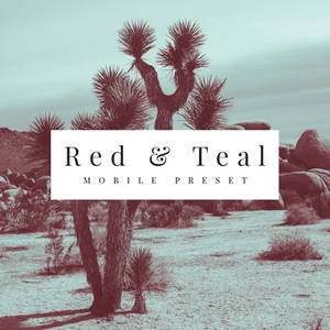 Red and Teal Mobile Preset
