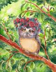 The Fairest Owl
