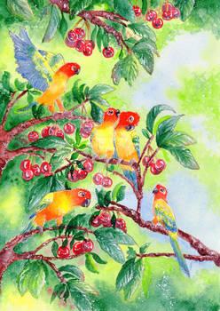 Into The Cherry Tree