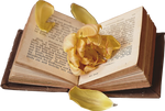 Book with Flower inside PNG #2