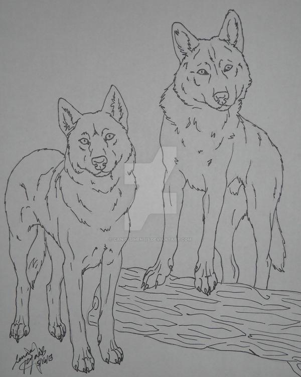 Czechoslovakian Wolfdogs lineart