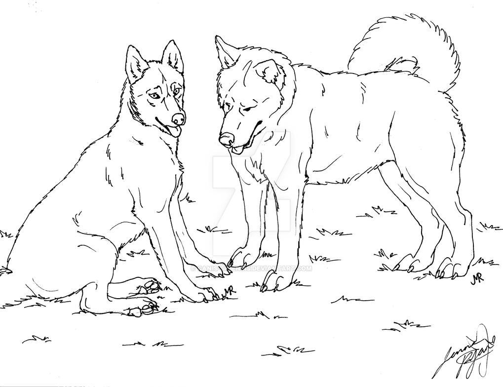 siberian huskies lineart by Canis-Simensis on DeviantArt