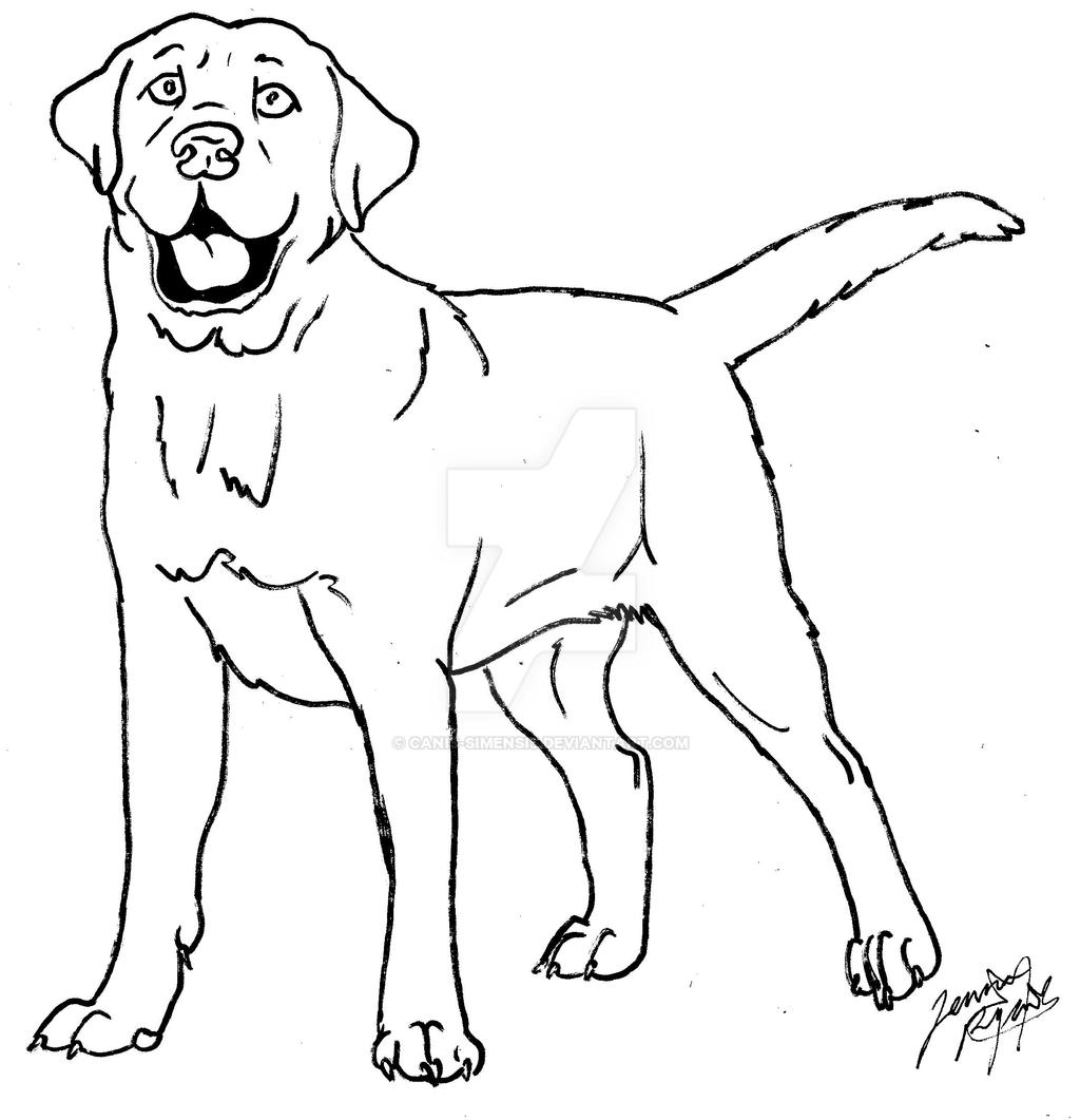 labrador coloring page by Canis-Simensis on DeviantArt