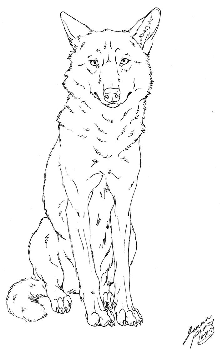 an innocent Iberian wolf by Canis-Simensis