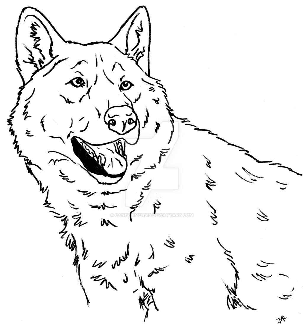 free wolf puppy coloring pages - photo#37