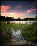 Redland bay wetlands by newintenz