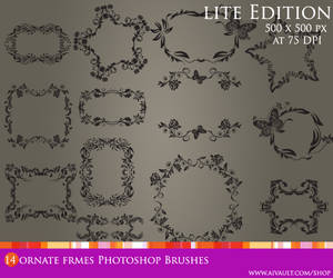 Ornate Frame Photoshop Brushes by one8edegree