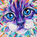 Cats in Colour 1