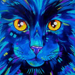 Cats in Colour 2
