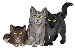 Dovewing and tigerheart's kits