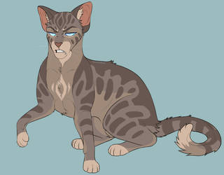 Jayfeather by th1stlew1ng