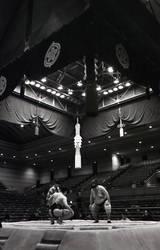Sumo by JamesBardolph