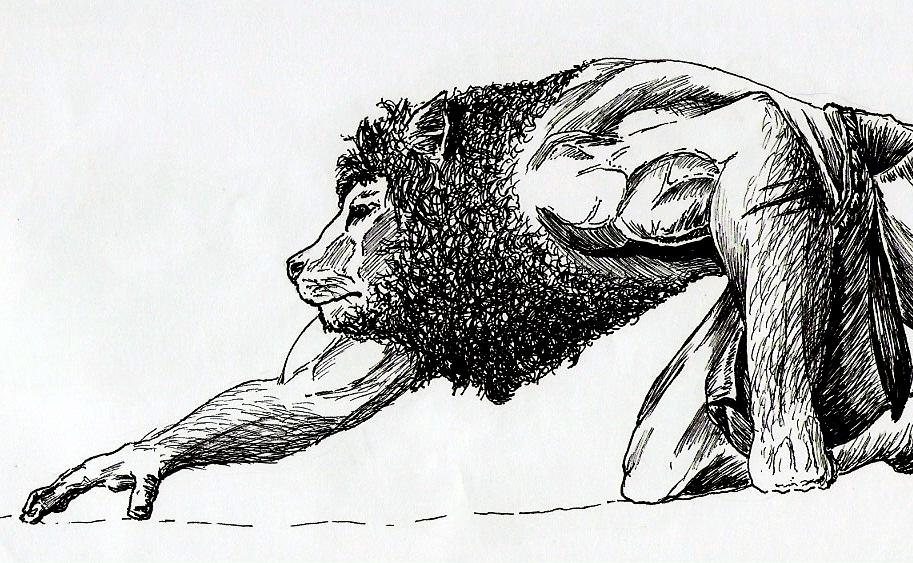 Deviantart Lion Warrior: Lion Warrior By UsefullIdiot On DeviantArt