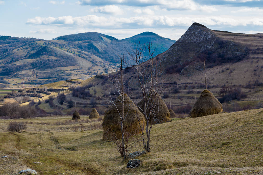 Hays and hills
