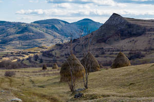Hays and hills by Reiep