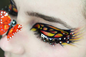 Nosey Butterfly