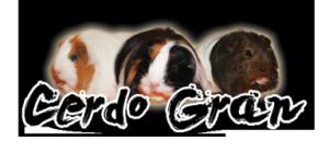 CerdoGran's Profile Picture
