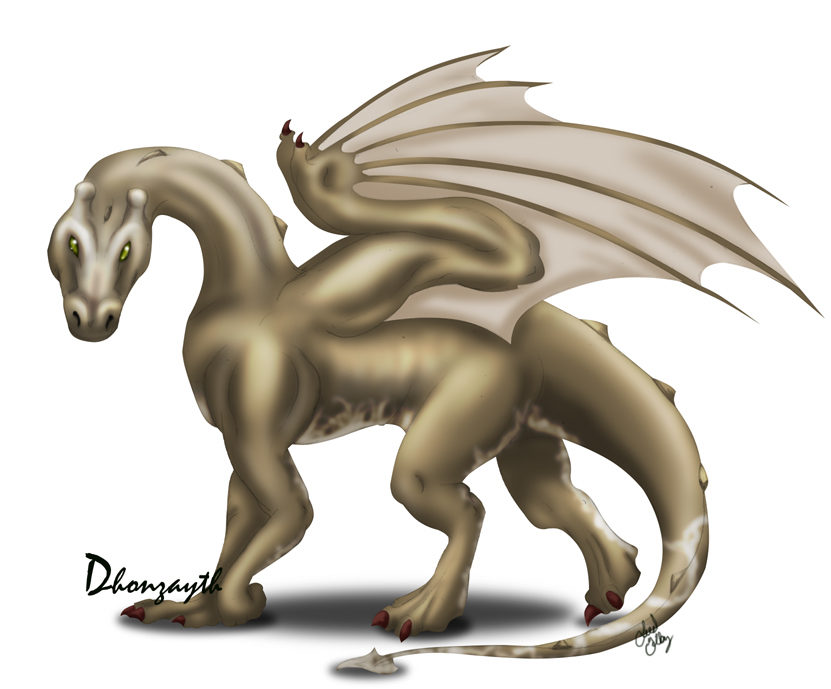 Dragon__bronze_Dhonzayth_by_kaleeko.jpg