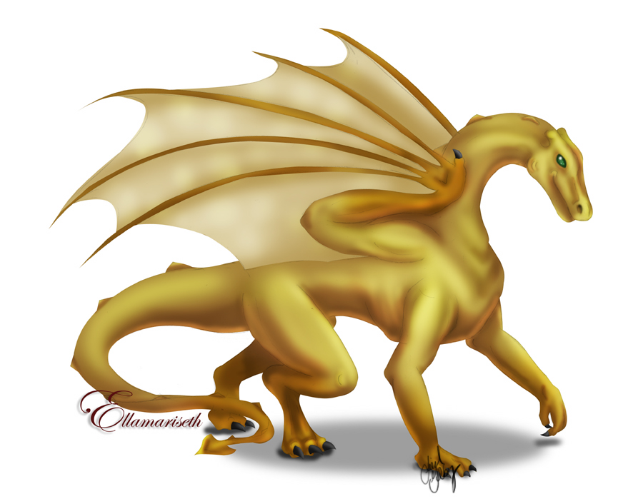 Dragon__Gold_Ellamariseth_by_kaleeko.jpg