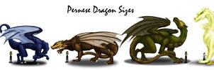 Pernese Dragon Size Chart by kaleeko