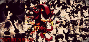 Archie Shadow The Hedgehog by DeathGoddess1995