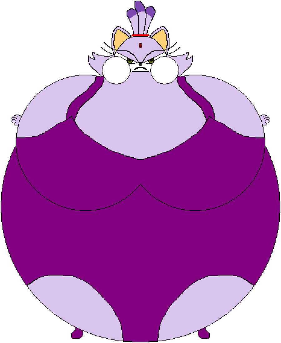Blaze The Cat Inflation Pics Download