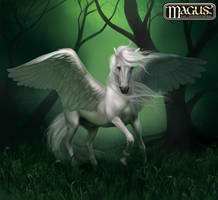 Pegasus by Anikoo