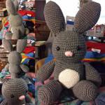 Bun Bun The Teddy Bunny Rabbit