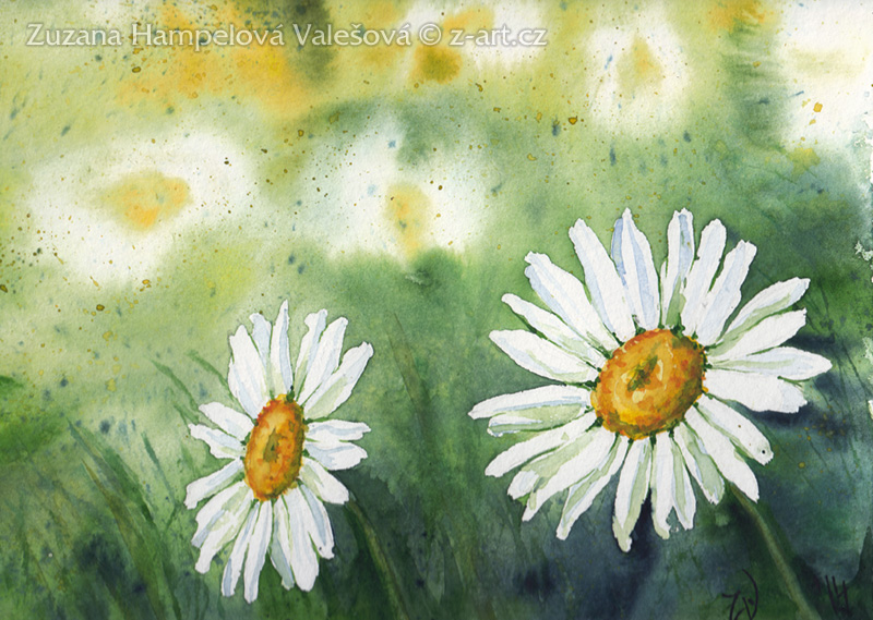 Daisies by Lillian-Bann