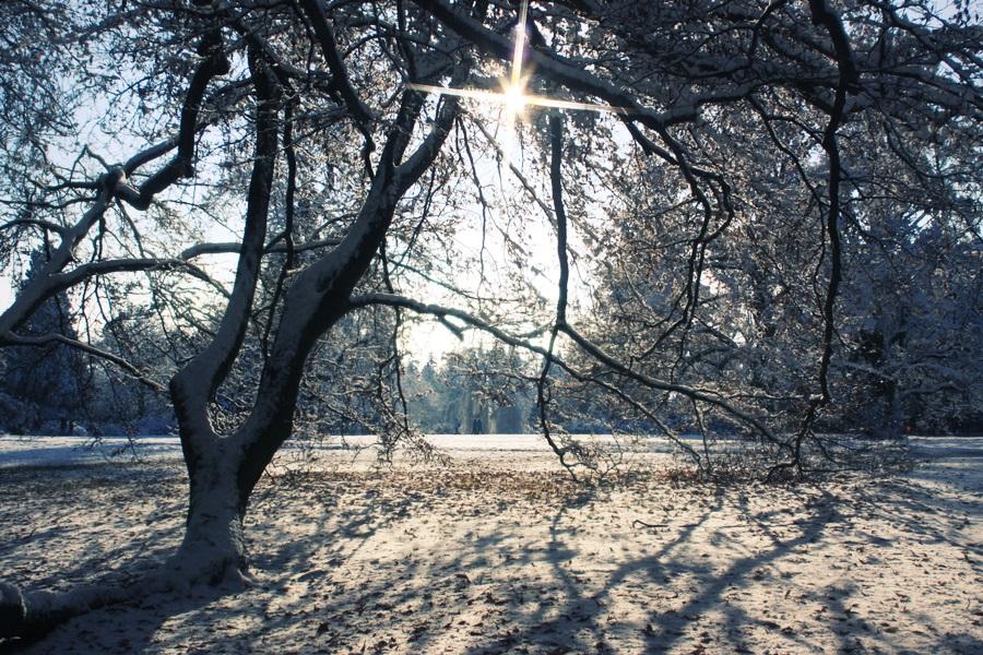 Winter fairy tale by Lillian-Bann