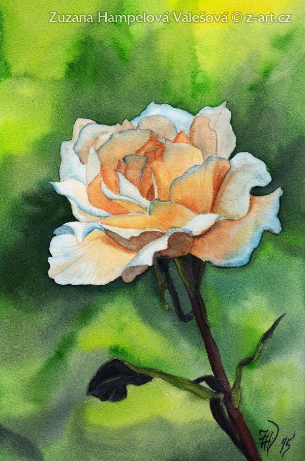 morning rose by lillian bann on deviantart. Black Bedroom Furniture Sets. Home Design Ideas