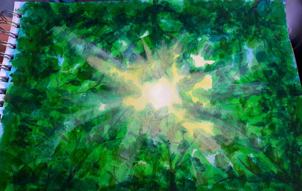 summer sun through the canopy by TaitGallery