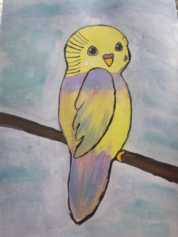 Cartoon Charlie budgie by TaitGallery