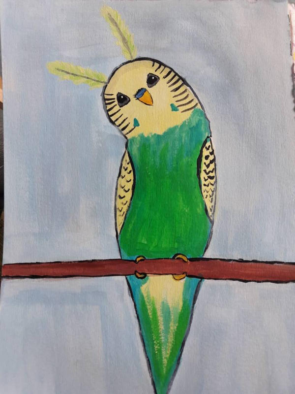 bunny or bird? by TaitGallery