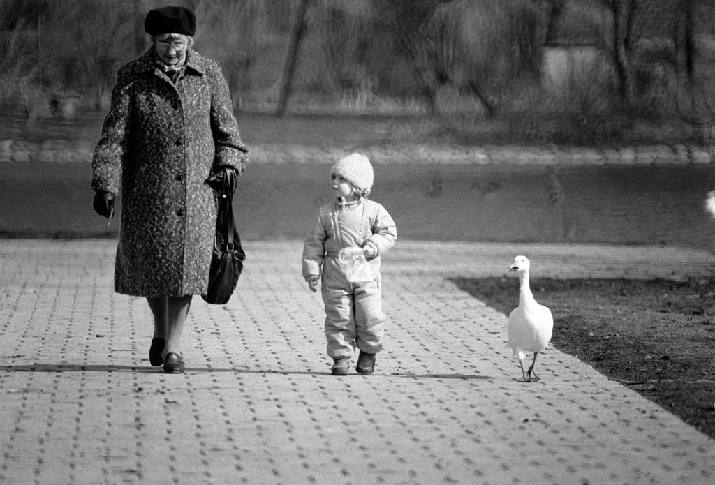 Walk in the park by ezkilzon