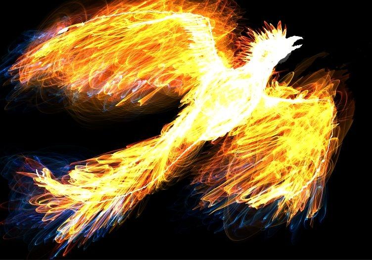 [IMPORTANT] Une nuit bouleversante Phoenix_fire_by_artisticpuppy-d38hu12