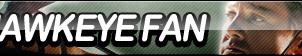 Hawkeye Fan Button by ButtonsMaker