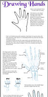 -Hands Tutorial-