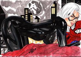 Black Cat!! by josileudo