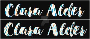 Script Font Signature - Pattern