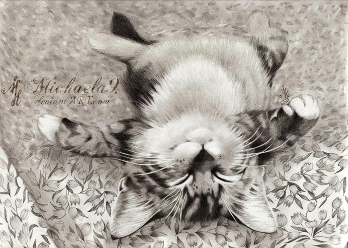 Relaxing Kitty by Michaela9