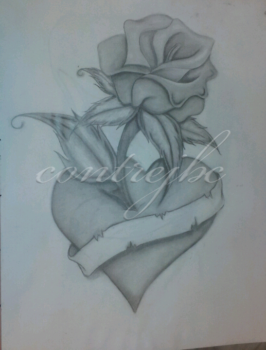 Heart And Rose Love Drawings heart-rose-draw...