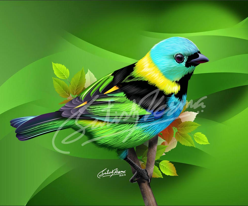 Colorful Bird by satishverma